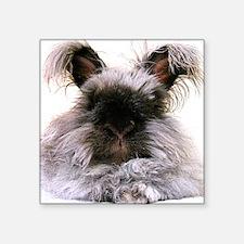 "rabbit calendar Square Sticker 3"" x 3"""
