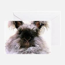 rabbit calendar Greeting Card
