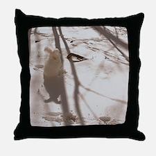 febnew Throw Pillow
