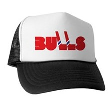 Birmingham Bulls (on black) Hat