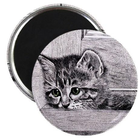 KittenInDrawer_10x10 Magnet