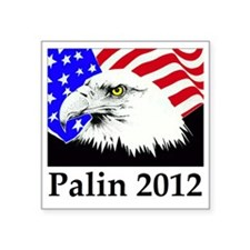 """aaapalineagle_flag Square Sticker 3"""" x 3"""""""