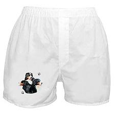 Berner Trio Boxer Shorts