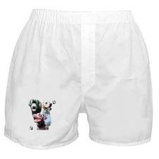 Lab Trio Boxer Shorts