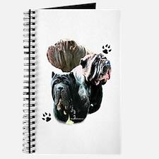 Neo Trio Journal