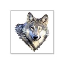 "3-GRAY WOLF Square Sticker 3"" x 3"""