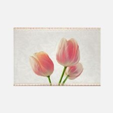 Pale Pink Tulips Rectangle Magnet