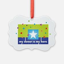 donor hero big Ornament