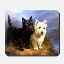 Black And White Highland Terriers