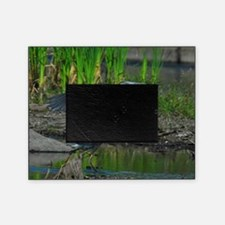 9x12_print 3 Picture Frame