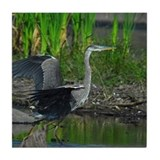 Great blue heron Drink Coasters