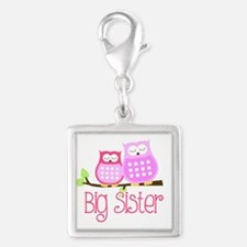 Big Sister Pink Owls Charms