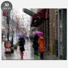DC_Fed2010 Snow Storm_2000x2000 Puzzle