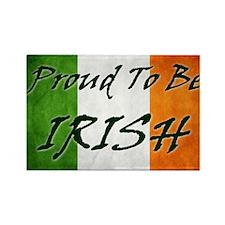 irish_flag_banner_3w Rectangle Magnet