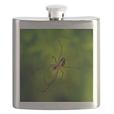 lecauge_mouse Flask
