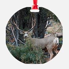 Mule deer spur buck Ornament