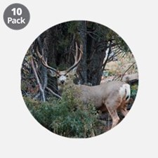 "Mule deer spur buck 3.5"" Button (10 pack)"