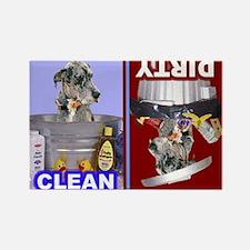 5-4-3-Dishwasher2 -RecMag -GreatDane,BlueMerle Mag