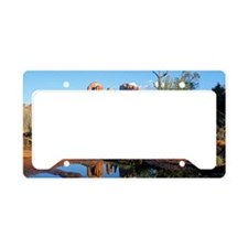 cathedral reflection License Plate Holder