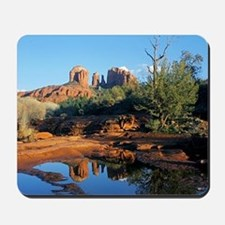 cathedral reflection Mousepad