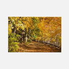 Autumn Road Rectangle Magnet