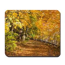 Autumn Road Mousepad