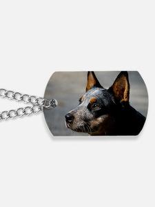 Australian Cattle Dog Dog Tags