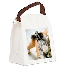 11x17_printlap Canvas Lunch Bag