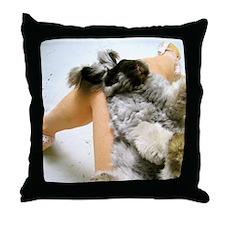 11x17_printlap Throw Pillow