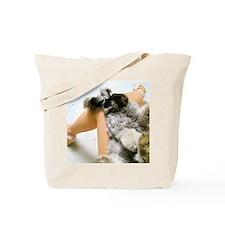 16x20_prinlap Tote Bag