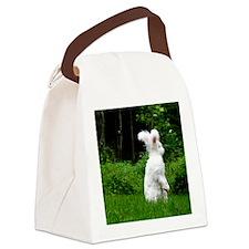 16x20_printstanding Canvas Lunch Bag