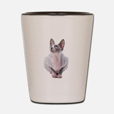 Sphynx Mania Shot Glass