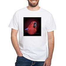 PertieIMG_3991 Shirt