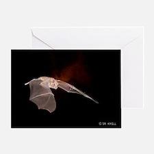 BAT10X14 Greeting Card