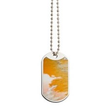 2-Contemplating  Dog Tags