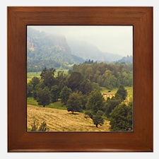 3-Rural Framed Tile