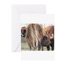 COW PROTECTION Greeting Cards (Pk of 10)