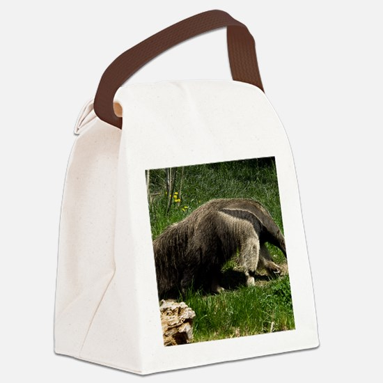 (4) Giant Anteater Canvas Lunch Bag