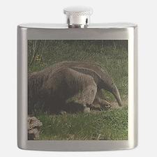 (15) Giant Anteater Flask