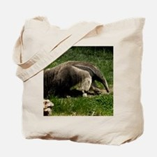 (15) Giant Anteater Tote Bag