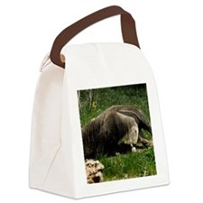 (12) Giant Anteater Canvas Lunch Bag