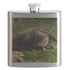 (12) Giant Anteater Flask