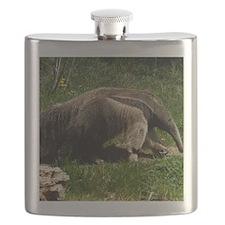 (14) Giant Anteater Flask