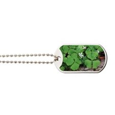 Shamrock Dog Tags