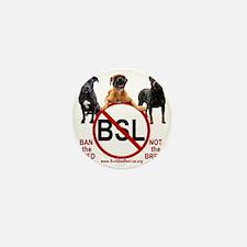 stop_bsl_trans2 Mini Button