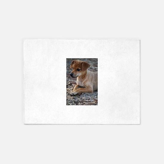 Curious Labrador Retriever Puppy St 5'x7'Area Rug