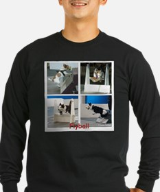 Flyball T