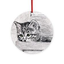 KittenInDrawer_8x10 Round Ornament