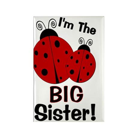 imtheBIGsister_ladybug2 Rectangle Magnet