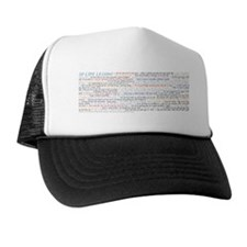 831x3_Mug7_all50 Trucker Hat